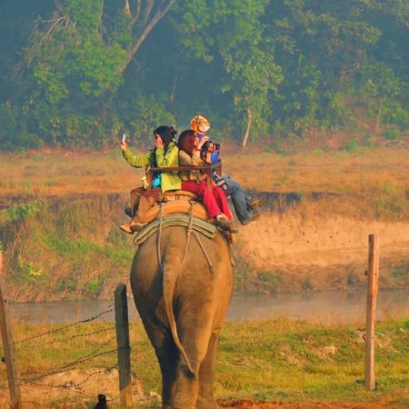 Chitwan National Park – the must destination while traveling to Nepal