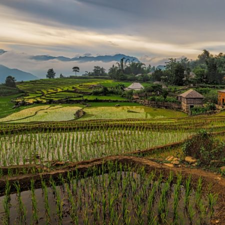 The raw beauty and culture of Vietnam